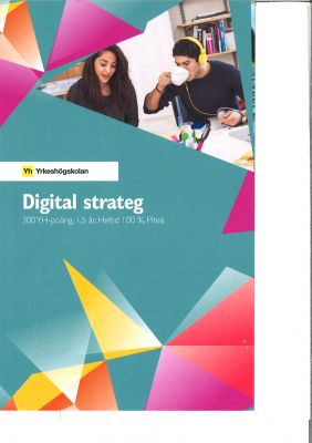 YH digitalstrateg