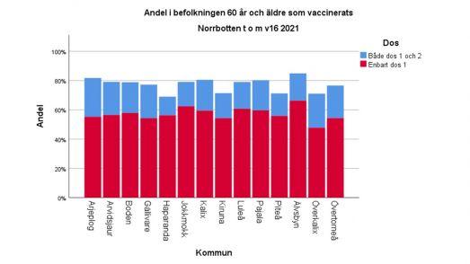 Andel 60 år och äldre i Norrbotten som vaccinerats till och med vecka 16. I Älvsbyns kommun är det flest vaccinerade hittills, över 80%.