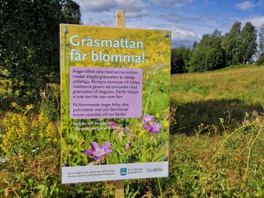 Foto på kommunal ängsyta med skylt om att Gräsmattan får blomma.